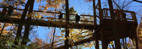 Fall Fun! Pumpkinville and Holden Arboretum's new Canopy Walk & Tower!