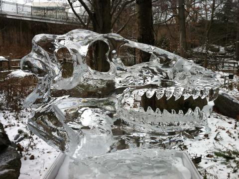 Cleveland Museum Natural History Ice Dinosaur