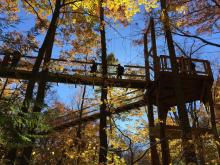 Holden Arboretum's new Murch Canopy Walk